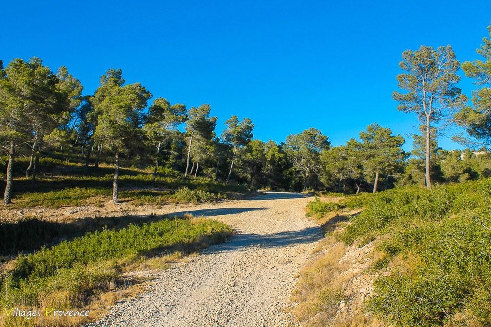 Sentier - Ensuès-la-Redonne