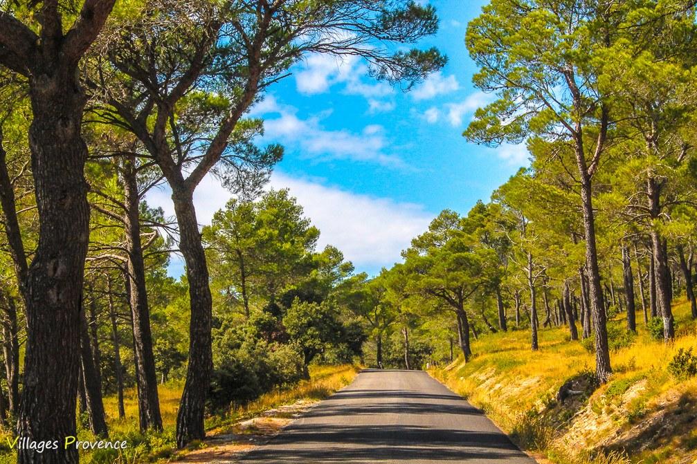 Route - Eyguières